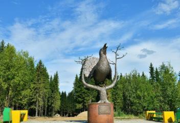 Токующий глухарь – северная птица счастья